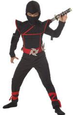 Ninja-fighter